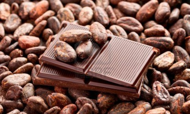 Cocoa Helps Kidney Patients Stave Off Heart Failure