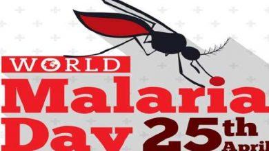 Photo of World Malaria Day 2019